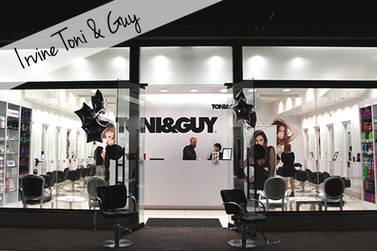 Irivne Toni and Guy event November 2014