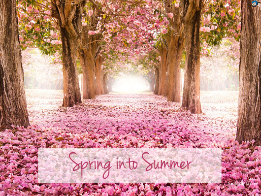 spring into summer beauty