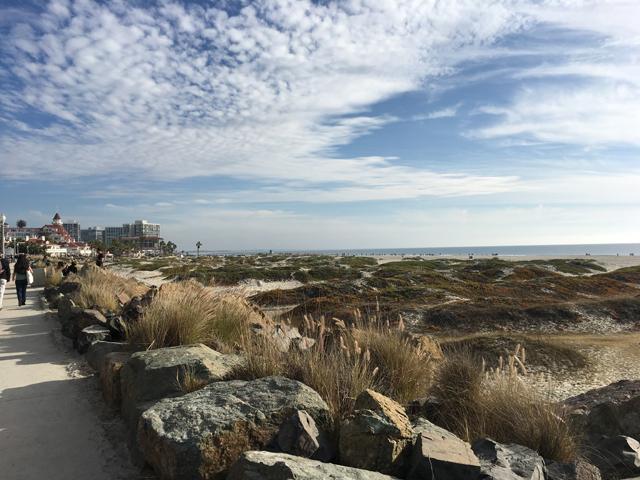 Week 6 Coronado Beach