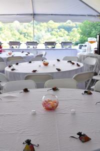 My Wedding Reception Decor