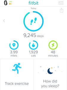 Week 9 Fitbit Challenge