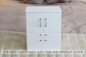 The best valentine's gift for makeup lovers