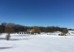 Week 10 Beautiful Snow